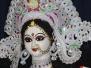 Saraswati Puja 2016-17